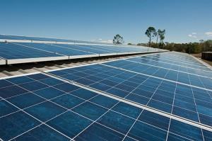 Poly Solar Panel Brisbane