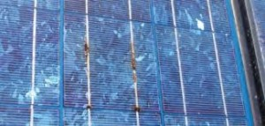 cheap solar panels prices